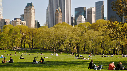 Sheep Meadow, Central Park, New York